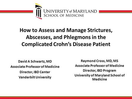 How to Assess and Manage Strictures, Abscesses, and Phlegmons in the Complicated Crohn's Disease Patient David A Schwartz, MD Associate Professor of Medicine.