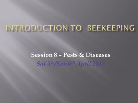 Session 8 – Pests & Diseases Sat 5 th /Sun 6 th April 2013.