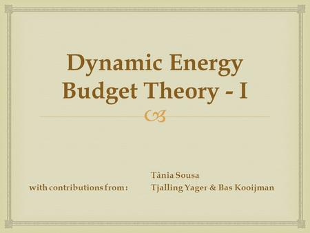  Dynamic Energy Budget Theory - I Tânia Sousa with contributions from :Tjalling Yager & Bas Kooijman.