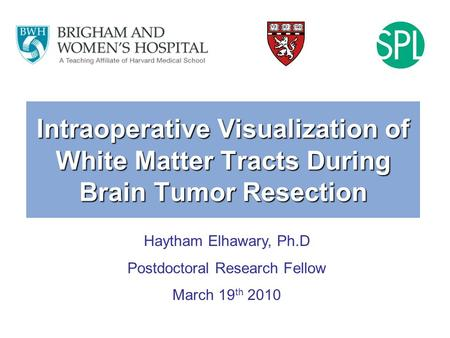 Intraoperative Visualization of White Matter Tracts During Brain Tumor Resection Haytham Elhawary, Ph.D Postdoctoral Research Fellow March 19 th 2010.