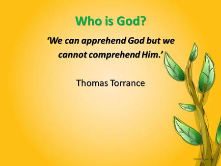 Who is God? 'We can apprehend God but we cannot comprehend Him.' Thomas Torrance.