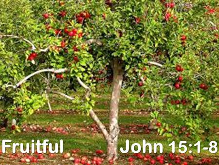 "Fruitful John 15:1-8. Purposes of Fruit trees Then God said, ""Let the land produce vegetation: seed-bearing plants and trees on the land that bear fruit."