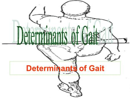 Determinants of Gait. I. Displacement of center of gravity (COG). II. Factors responsible for minimizing displacement of center of gravity.