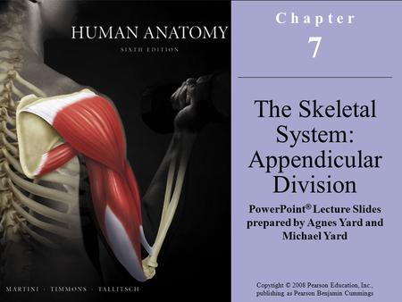 Copyright © 2008 Pearson Education, Inc., publishing as Benjamin Cummings C h a p t e r 7 The Skeletal System: Appendicular Division PowerPoint ® Lecture.