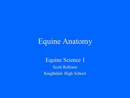 Equine Anatomy Equine Science I Scott Robison Knightdale High School.