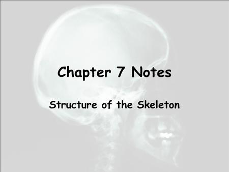 Chapter 7 Notes Structure of the Skeleton. Cranium Mandible Cervical vertebrae Thoracic vertebrae Lumbar vertebrae Coxa/Pelvic girdle Sacrum Coccyx Clavicle.