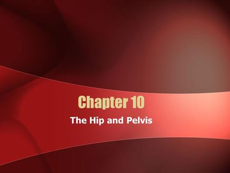 Chapter 10 The Hip and Pelvis. Bones of the Pelvis Pelvic Bone: ACoccyx: L Pubic Symphysis: A1Acetabulum: R Sacrum: JSacroiliac Joint: K.