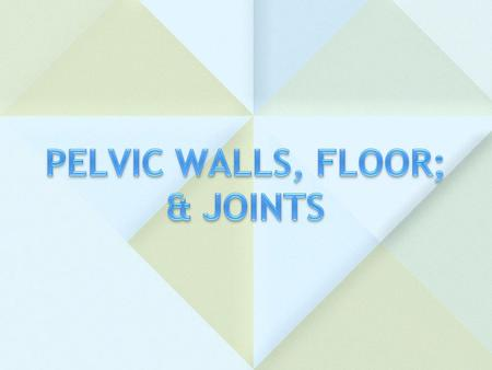 PELVIC WALLS, FLOOR; & JOINTS