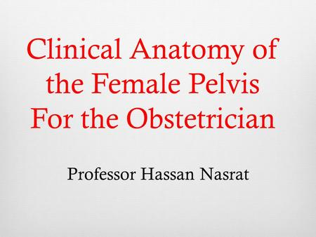 Clinical Anatomy of the Female Pelvis For the Obstetrician Professor Hassan Nasrat.