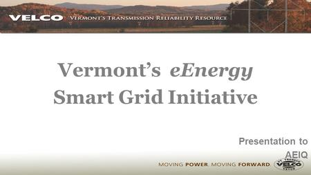 Vermont's eEnergy Smart Grid Initiative Presentation to AEIQ.