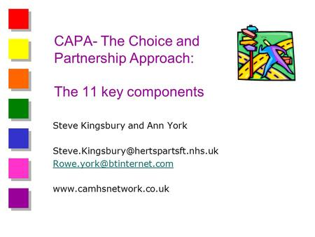 CAPA- The Choice and Partnership Approach: The 11 key components Steve Kingsbury and Ann York