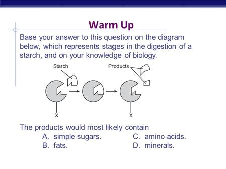 Warm Up Base your answer to this question on the diagram below, which represents stages in the digestion of a starch, and on your knowledge of biology.