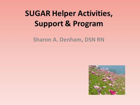 SUGAR Helper Activities, Support & Program Sharon A. Denham, DSN RN.