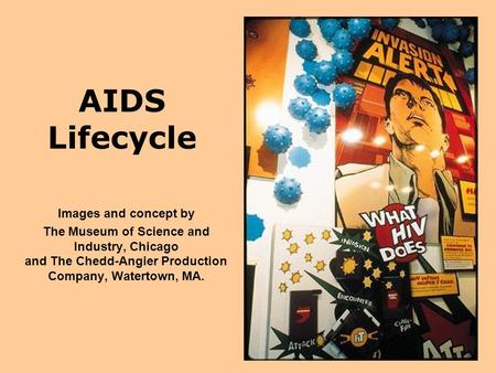 AIDS Lifecycle Images and concept by The Museum of Science and Industry, Chicago and The Chedd-Angier Production Company, Watertown, MA.