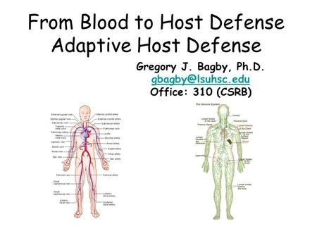 From Blood to Host Defense Adaptive Host Defense Gregory J. Bagby, Ph.D. Office: 310 (CSRB)
