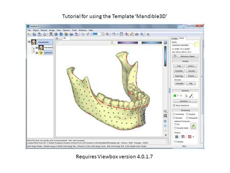 Tutorial for using the Template 'Mandible3D' Requires Viewbox version 4.0.1.7.