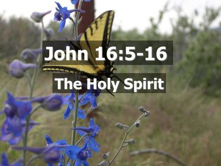 John 16:5-16 The Holy Spirit.  A person Who is the Holy Spirit? But the Helper, the Holy Spirit, whom the Father will send in My name, He will teach.
