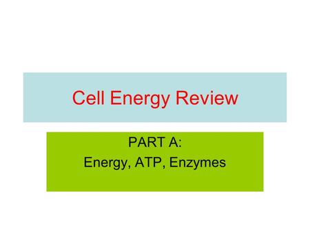 Cell Energy Review PART A: Energy, ATP, Enzymes. What is the capacity to do work? A. entrophy B. energy C. endergonic D. exergonic.
