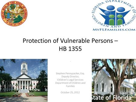 Protection of Vulnerable Persons – HB 1355 State of Florida. Stephen Pennypacker, Esq. Deputy Director, Children's Legal Services Department of Children.