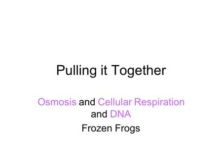 Pulling it Together Osmosis and Cellular Respiration and DNA Frozen Frogs.