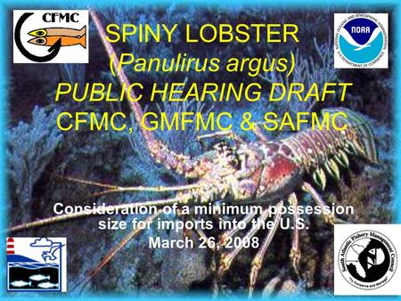 SPINY LOBSTER (Panulirus argus) PUBLIC HEARING DRAFT CFMC, GMFMC & SAFMC Consideration of a minimum possession size for imports into the U.S. March 26,