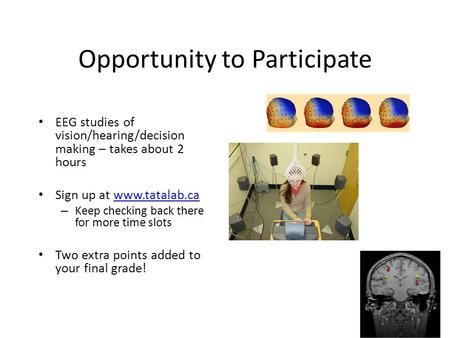 Opportunity to Participate EEG studies of vision/hearing/decision making – takes about 2 hours Sign up at www.tatalab.cawww.tatalab.ca – Keep checking.