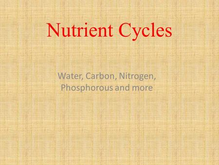 Nutrient Cycles Water, Carbon, Nitrogen, Phosphorous and more.