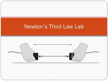 Newton's Third Law Lab.