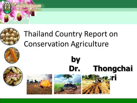 By Dr. Thongchai Tangpremsri by Dr. Thongchai Tangpremsri Thailand Country Report on Conservation Agriculture.