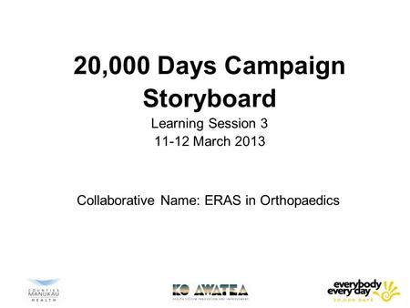 20,000 Days Campaign Storyboard Learning Session March 2013