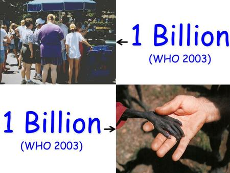 1 Billion (WHO 2003) 1 Billion (WHO 2003). Functional nutrition? Health Disease Health Nutrition in the process of care.