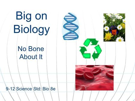 Big on Biology No Bone About It 9-12 Science Std: Bio 8e.