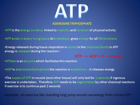 ADENOSINE TRIPHOSPHATE ATP is the energy currency linked to intensity and duration of physical activity ATP exists in every living tissue its breakdown.