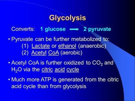 Glycolysis Converts: 1 glucose 2 pyruvate Pyruvate can be further metabolized to: (1) Lactate or ethanol (anaerobic) (2) Acetyl CoA (aerobic) Acetyl CoA.
