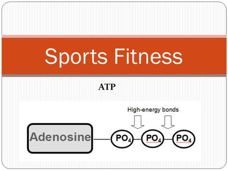 Sports Fitness ATP. Session 7 Objectives SOLs: 11/12.1, 11/12.2, 11/12.3, 11/12.4, 11/12.5 Objectives The will understand the importance of good nutrition.