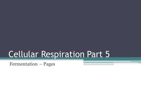 Cellular Respiration Part 5 Fermentation – Pages.