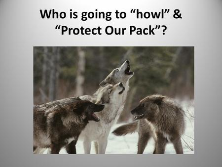 "Who is going to ""howl"" & ""Protect Our Pack""?. 2 I believe something should be done to intervene in problematic or potentially harmful situations. A. Strongly."