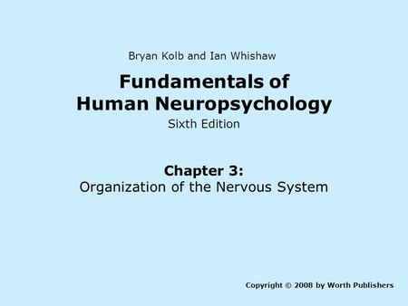 Fundamentals of Human Neuropsychology Sixth Edition Chapter 3: Organization of the Nervous System Copyright © 2008 by Worth Publishers Bryan Kolb and Ian.