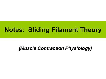 Notes: Sliding Filament Theory [Muscle Contraction Physiology]