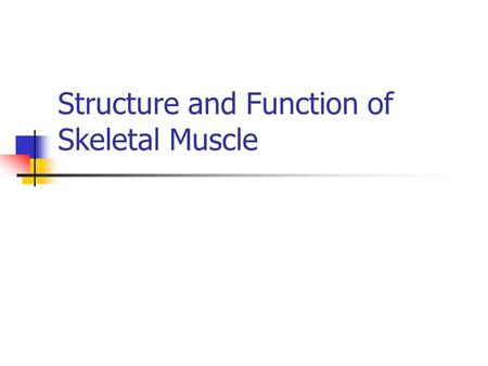 Structure and Function of Skeletal Muscle. Skeletal Muscle Human body contains over 400 skeletal muscles 40-50% of total body weight Functions of skeletal.