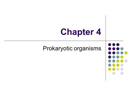 Chapter 4 Prokaryotic organisms. Prokaryotic cell Includes bacteria and archaea Thousands of species of bacteria differ by morphology (shape), chemical.