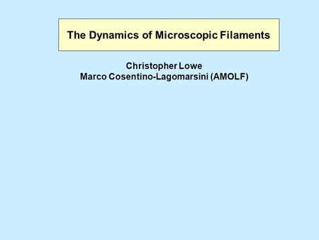 The Dynamics of Microscopic Filaments Christopher Lowe Marco Cosentino-Lagomarsini (AMOLF)