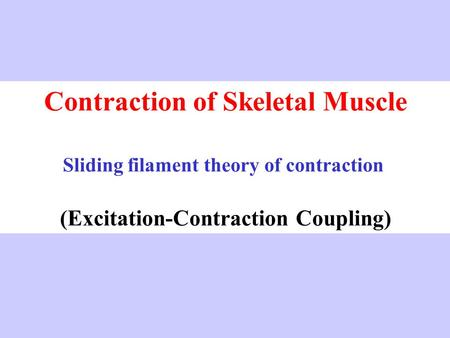 Contraction of Skeletal Muscle Sliding filament theory of contraction (Excitation-Contraction Coupling)