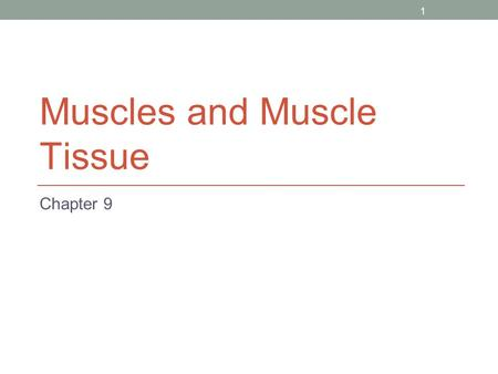1 Muscles and Muscle Tissue Chapter 9. 2 Overview of Muscle Tissues Compare and Contrast the three basic types of muscle tissue List four important functions.