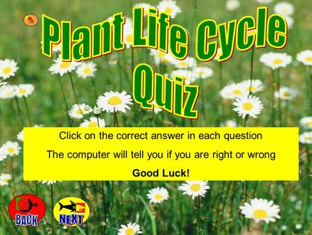 Click on the correct answer in each question The computer will tell you if you are right or wrong Good Luck!