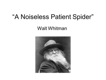 noiseless patient spider essay In the time period between 1860 and 1880, war was commonplace and it hit home for most americans walt whitman was no exception.