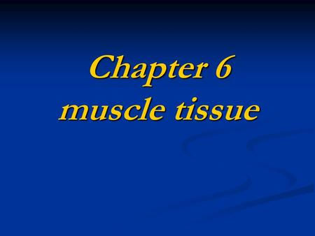 Chapter 6 muscle tissue. Composition muscle cell+loose connective tissue ● muscle cell →muscle fiber, sarcolemma, sarcoplasm, sarcoplasmic reticulum ●