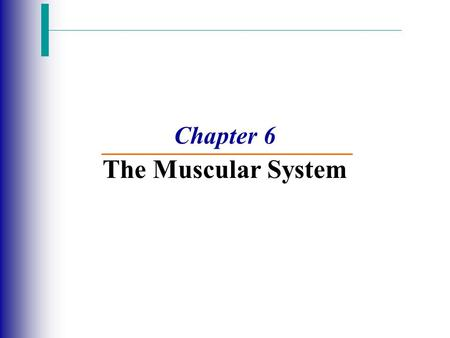 Chapter 6 The Muscular System. Functions of Muscular System Slide 6.8 1.Produce movement and manipulate the environment 2.Maintain posture 3.Stabilize.