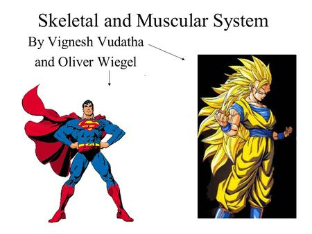 Skeletal and Muscular System By Vignesh Vudatha and Oliver Wiegel.