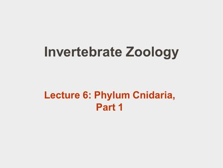 Invertebrate Zoology Lecture 6: Phylum Cnidaria, Part 1.